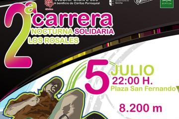 II Carrera Solidaria Nocturna de Los Rosales